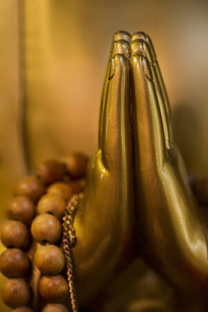 Hands folded in prayer. Buddha hands close-up.