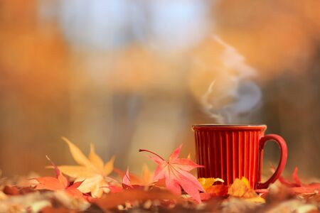 Blurred autumn tree background with hot steaming cup of coffee  tea. (Place for text, shallow DOF).
