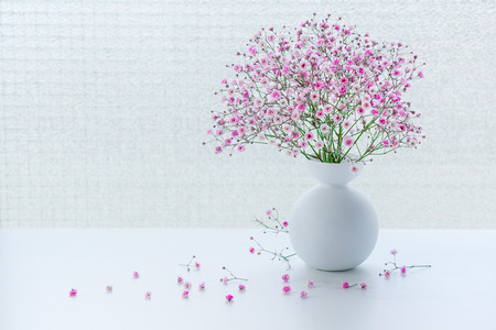 Small pink gypsophila flowers in jug on white table. Soft light from window. Banco de Imagens