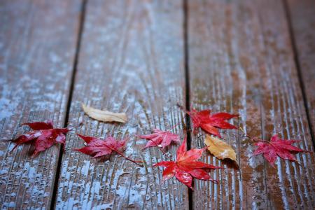 Autumn maple leaves on wooden background. Banco de Imagens