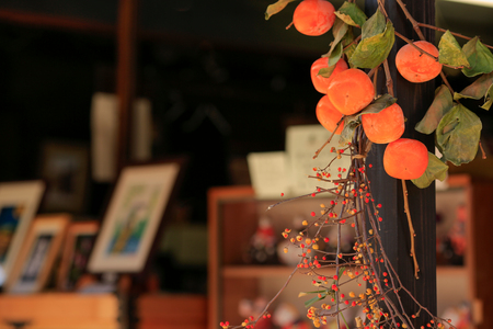 It is a tour of the city of Kyoto and Edo (Tokyo).