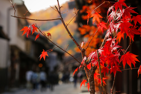 In autumn, people walk along a city street. Historic town of Narai-juku, Japan.