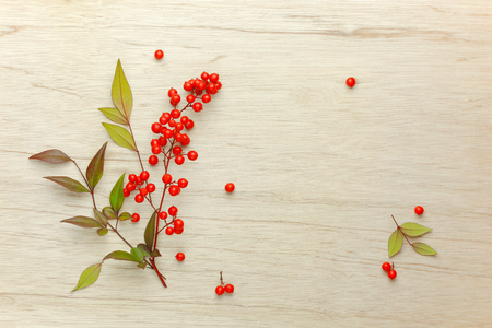 Red berries of sacred bamboo (Nandina Domestica) flowers on wooden background.