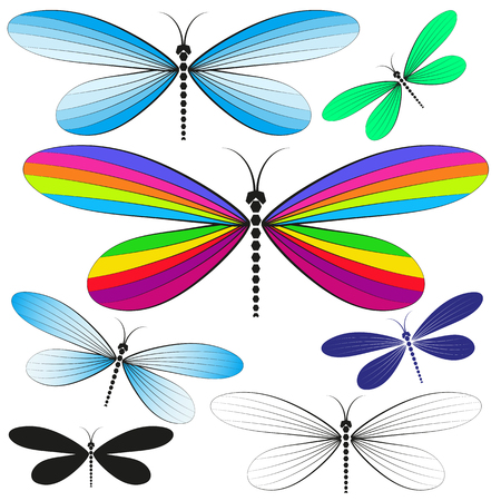 Set of multicolored isolated ornamental dragonflies on transparent background for your design. Vector image. Eps 8
