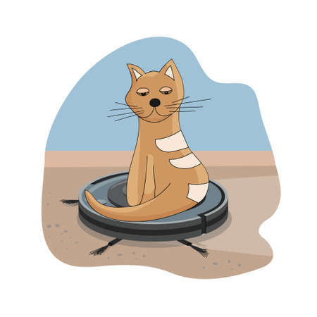 Smart robot vacuum cleaner. Modern intelligent household appliances for cleaning the apartment. Cat sitting on a working vacuum cleaner, and riding on it. Cleaning and home and favorite cute pets.