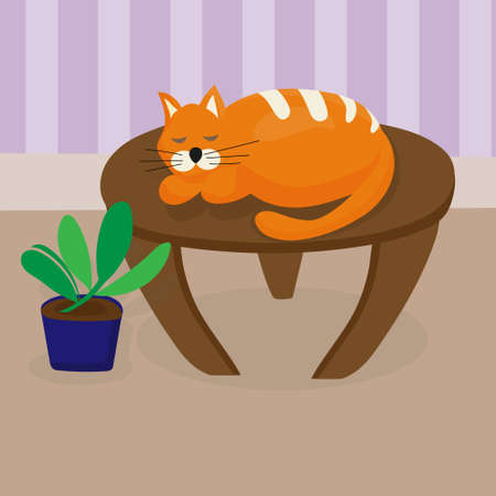 Redhead cat sleeping on table in cozy living room. Favorite pet. Wooden coffee table, indoor plant. Flat vector illustration