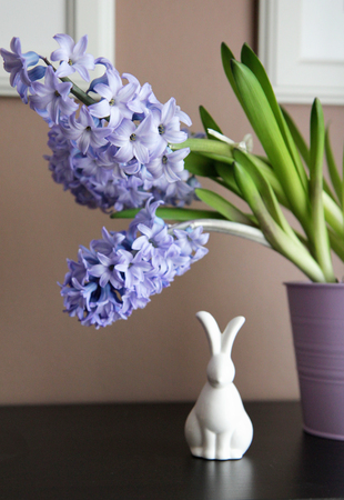 Simple, modern Easter decoration with blue and purple hyacinth bulbs, and minimalist ceramic bunny