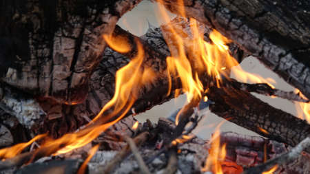 flame on coals in a campfire