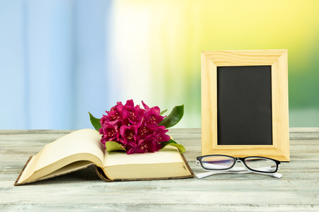 Empty frame and a old book with a blossom from pink azalea and a pair of glasses  over bright pastel background. Concept back to school. The teachers day. Standard-Bild