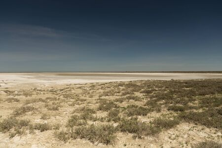 Consequences of the Aral sea disaster.Steppe and sand on the site of the former bottom of the Aral sea.Kazakhstan.