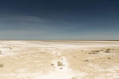Consequences of the Aral sea disaster. Sandy salt desert on the site of the former bottom of the Aral sea.Kazakhstan
