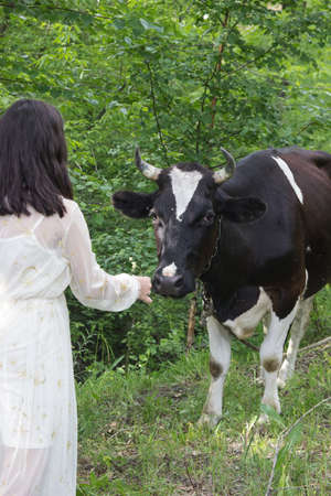 Beautiful young woman with flowers and cow on the slopes of. 版權商用圖片