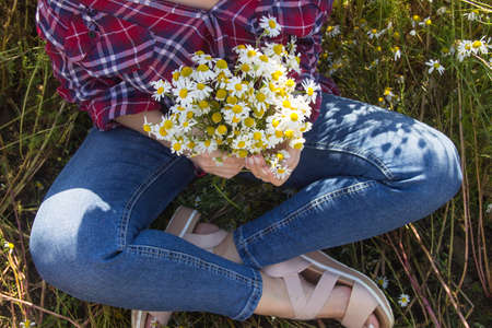 Woman hand holding daisies growing in the field.