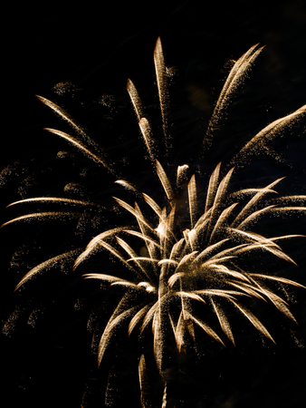 Burst of gold party fireworks