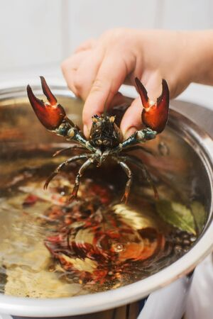 hand puts fresh crawfish in a pan with bowling water and spices