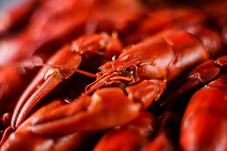 fresh hot red crawfish with lemon on dark wood table, close up 免版税图像