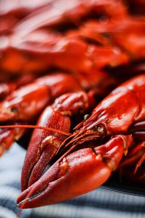 fresh hot red crawfish with lemon on dark wood table, close up Stok Fotoğraf