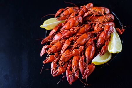 fresh hot red crawfish with lemon on dark wood table, copyspace
