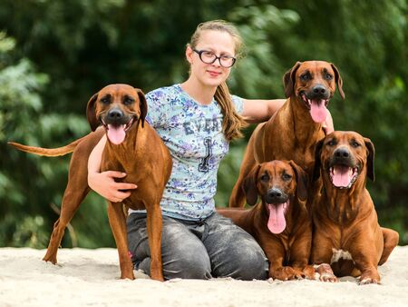 Smiling girl and four happy cheerful Rhodesian Ridgeback dog