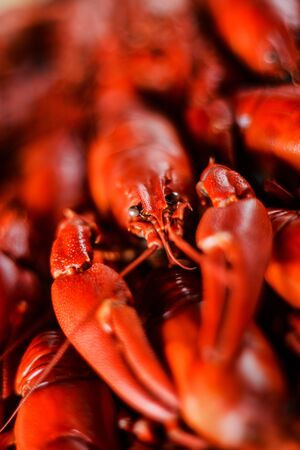 fresh hot red crawfish with lemon on dark wood table, close up