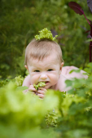cute baby crawling in garden surrounded with cabbage salad