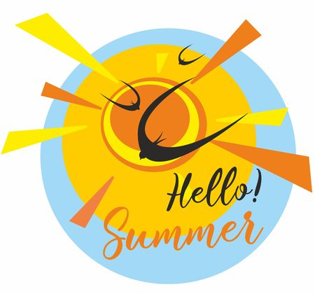 Hello summer. Sun.Sky. Birds. Swallows. Swifts. Greeting the summer. Vector illustration.