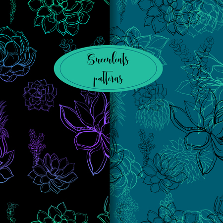 Set of seamless patterns. Succulents. Graphics Vector illustration