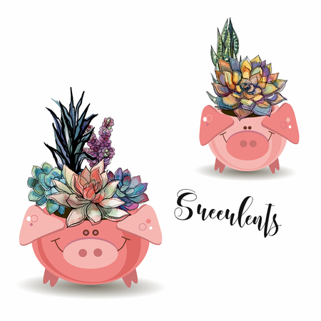 Flower arrangement of succulents. In funny pots in the form of pigs. Vector illustration