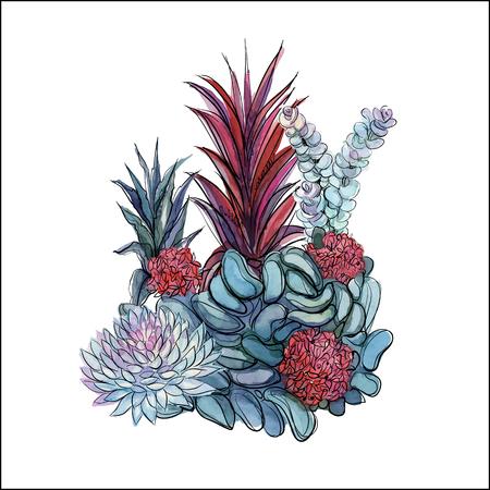 Bouquet of succulents. Flower arrangement for design. Watercolor. Graphics Vector