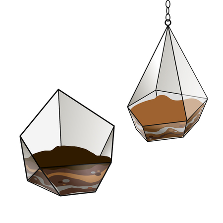 Geometric glass terrarium for succulents flowers. Floristic. The Florarium for flowers .Vector