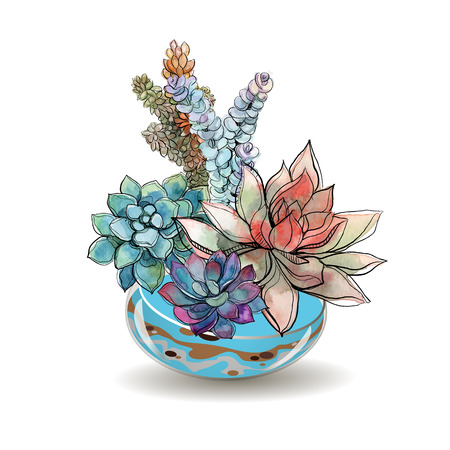 Succulents in glass aquariums. Colored sand. Flower decorative compositions. Graphics. Watercolor Vector