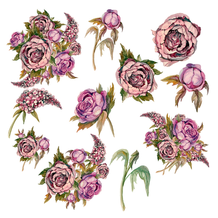 Set of delicate watercolor flowers. Roses peonies lilacs. Bouquets and individual flowers for decoration.