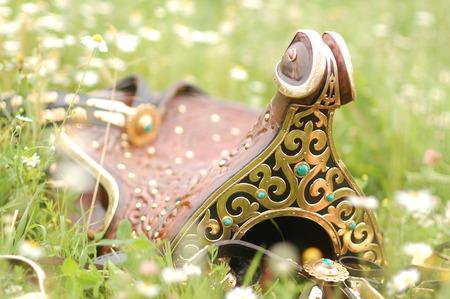 saddle: eastern saddle on grass