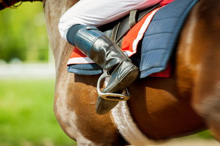 runing  thoroughbred race horse with jokey on it in sunny spring day detail