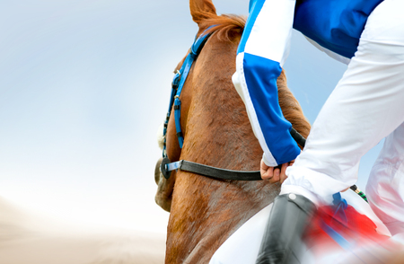 jockey on a racehorse closeup