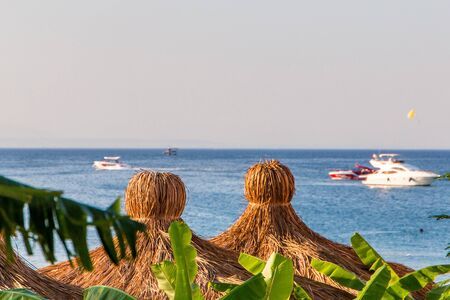 Summer sea view, with boat, beach umbrella, palm tree, on a sunny day. Reklamní fotografie