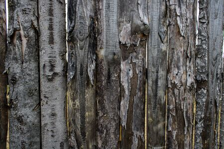 Wooden background texture of old boards close up Foto de archivo