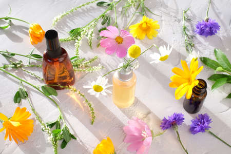 Bottles with natural pharmaceuticals ingredients and colorful flowers with sunlight on white background