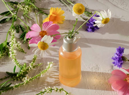 Bottle with natural elixir and chamomile with colorful flowers around Banque d'images