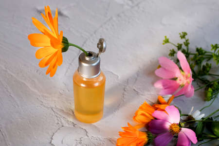 Bottles with natural elixir and calendula flower as natural cosmetic concept Banque d'images