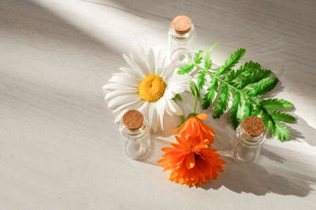Bottles near calendula flower and chamomile with sunlight effect on wooden background