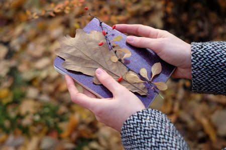 Notebook and fall leaves in woman hand on natural background. Autumn mood romantic concept. Selective focus