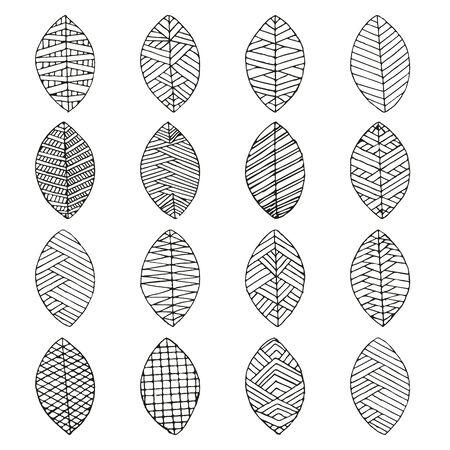 Vector set of leaves, collection of hand-drawn leaves Ilustração