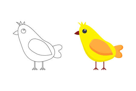 Vector illustration, funny baby chicken, on a white background, coloring pages. Vector illustration