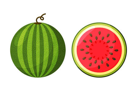 Watermelon vector. Watermelon with red flesh is halved isolate on a white background. Illusztráció