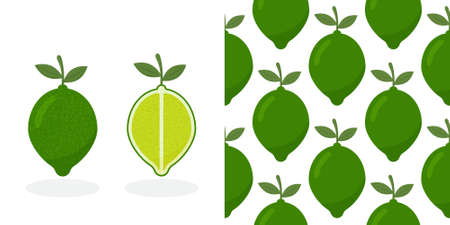 Lime with green leaves, slice citrus isolated on white background. Tropical fruits. Raw vegetarian food. Lime pattern.