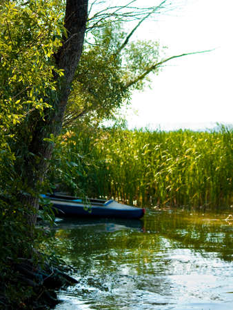 cane creek: Kayak in the bay of the river under the shade of trees Stock Photo