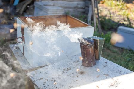 Bee smoker smoking in apiary copyspace seasonal honey bees beekeeping farming organic production producing concept.