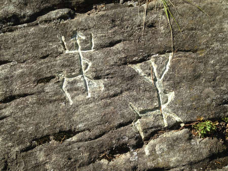 Rock paintings of ancient people. Image of deer or moose. Ancient drawing on a rock in Siberia in a deep forest