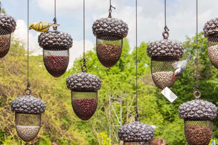 Beautiful hanging containers, forged metal vases for plants. Garden decorations, vases acorns. Small decorative birds sit on vases acorns Oak acorn interior design hanging vases 스톡 콘텐츠